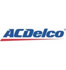 Φορτιστές αυτοκινήτων ACDelco (1)